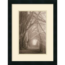 <strong>Amanti Art</strong> Enchanted Path Framed Art Print by Paul Kozal
