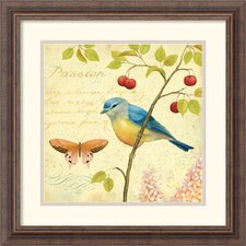 <strong>Amanti Art</strong> Garden Passion IV Framed Print by Daphne Brissonnet
