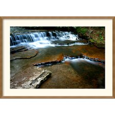 <strong>Amanti Art</strong> Collins Creek Framed Print by Andy Magee
