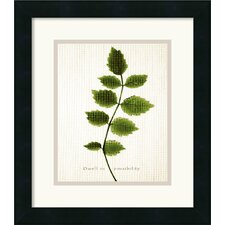 <strong>Amanti Art</strong> Flirt Framed Print by The Morris Studio