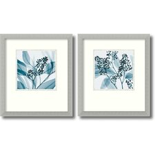 'Silver Eucalyptus' by Steven N. Meyers 2 Piece Framed Photographic Print Set