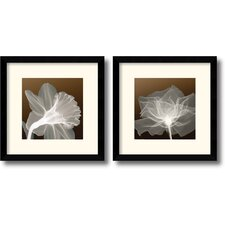 <strong>Amanti Art</strong> Sheer Elegance Framed Print (Set of 2)