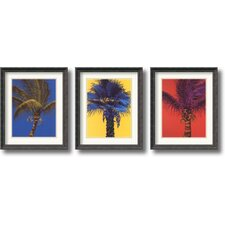 'Bold Palm' by Robert Charles Dunahay 3 Piece Framed Painting Print Set