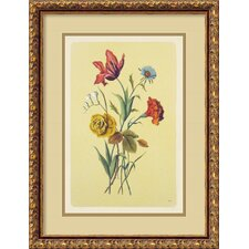 <strong>Amanti Art</strong> Botanical Bouquet I Italian Engraving Framed Print