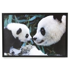 Pandas Framed Photographic Print