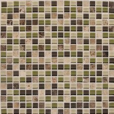 "Legacy Glass 12"" x 12"" Glazed Glass and Stone Mosaic in Jungle Blend"