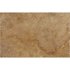 "Sistina 20"" x 13"" Porcelain Floor Tile in Mucelli"