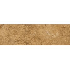 "Odyssey 13"" x 3"" Surface Bullnose Tile Trim in Noce"