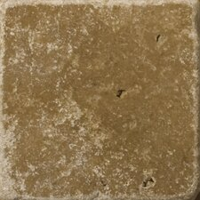 """Natural Stone 4"""" x 4"""" Cottage Tumbled Travertine in Noce"""