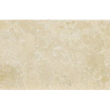 "Natural Stone 16"" x 24"" Tumbled Travertine Tile in Ancient Beige"