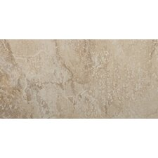 "Bombay 12"" x 24"" Glazed Porcelain Tile in Arcot"
