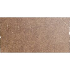"Genoa 12"" x 24"" Glazed Porcelain Tile in Sauli"