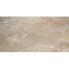 "Primavera 12"" x 24"" Glazed Porcelain Tile in Flora"