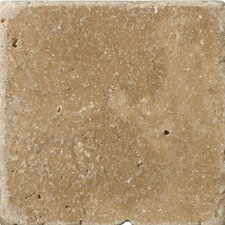"Natural Stone 4"" x 4"" Travertine Vino Tumbled Tile in Noce"