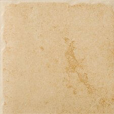"Genoa 16"" x 16"" Glazed Porcelain Floor Tile in Albergo"