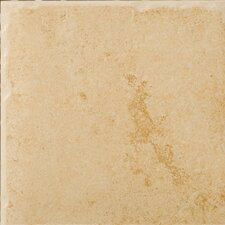 """Genoa 20"""" x 20"""" Glazed Porcelain Floor Tile in Albergo"""