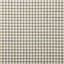 "Image 1/2"" x 1/2"" Glossy Glass Mosaic in Air"