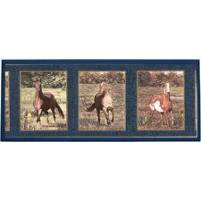 Majestic Horses Graphic Art on Plaque