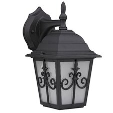 Aglea Rosa 1 Light Outdoor Wall Lantern