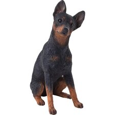 Mid Size Miniature Pinscher Sculpture in Black