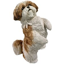 Small Size Begging Shih Tzu Sculpture in Gold / White
