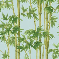 Echo Design Bamboo Wallpaper