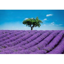 Ideal Decor Provence Wall Mural