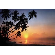 <strong>Brewster Home Fashions</strong> Komar Tropical Sunset 8-Panel Wall Mural