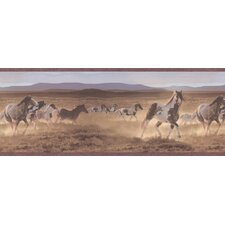 Northwoods Wyoming Wild Horses Border Wallpaper