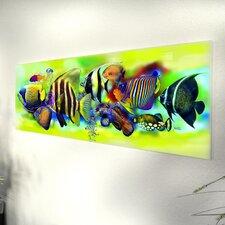 Glasbild Tropical Fishes - 33 x 95 cm