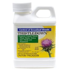 Thistledown Concentrate