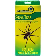Spider Trap (Set of 4)