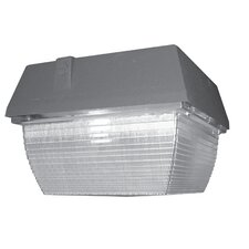 Small Vandal Resistant Canopy 1 Light Flush Mount