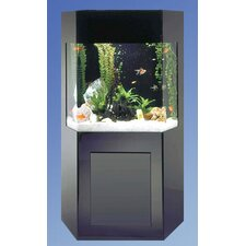 <strong>Midwest Tropical Fountain</strong> AquaCustom 50 Gallon Shadow Box Aquarium
