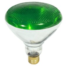 100W Green 120-Volt Incandescent Light Bulb