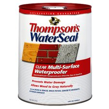 5 Gallon Clear WaterSeal® Multi-Surface Waterproofer 24105