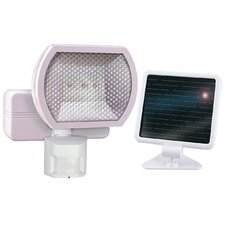 <strong>Heathco</strong> 1 Light Solar Motion Floodlight