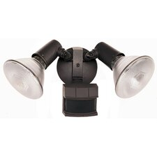 2 Lights Security Light Control