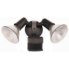 2 Lights Security Light Control