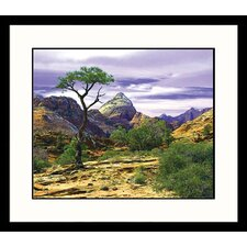 National Treasures Zion National Park Framed Photographic Print