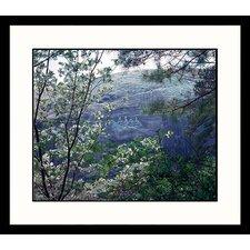 National Treasures Stone Mountain, Georgia Framed Photographic Print