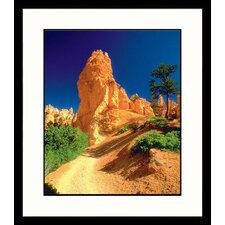 National Treasures Bryce Canyon Framed Photographic Print