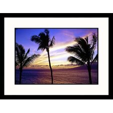 Seascapes 'Maui Sunset' by Mark Polott Framed Photographic Print