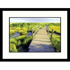 New Jersey Shore Framed Photograph - Rudi Von Briel