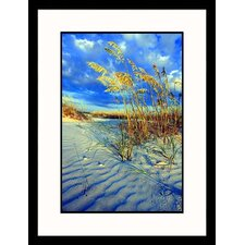Sea Oats on Sand Dune Framed Photograph - Wendell Metzen