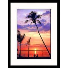 Seascapes 'Sunset, Lee County, Florida' by Jeff Greenberg Framed Photographic Print