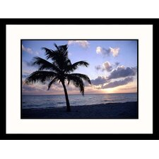 <strong>Great American Picture</strong> Silhouette of Palm Tree on Beach Framed Photograph