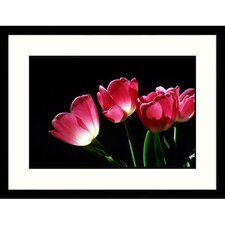 <strong>Great American Picture</strong> Red Tulips on Black Framed Photograph