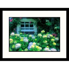 Florals Summer Flowers by Window Framed Photographic Print