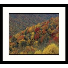<strong>Great American Picture</strong> Smokey Mountains Framed Photograph - Adam Jones